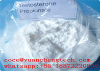 Biały proszek Testosteron Propionate Steroids Hormon Injectable For Body Building