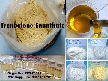 Chiny Yellow Steroid Powder Trenbolone Enanthate for Bodybuilding with Good Quality dystrybutor