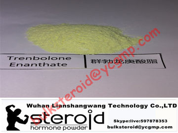 Chiny Trenbolone Enanthate Powder Muscle Gain Steroid Tren E / Parabola For Fat Loss dystrybutor