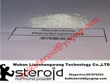 Chiny Injectable Nandrolone Phenylpropionate DECA Durabolin NPP Steroids Raws Powder dystrybutor