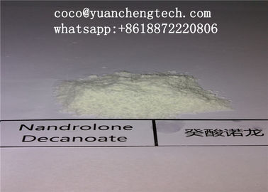 Chiny Bodybuilding Nandrolone DECA Durabolin Powder Anabolic Steroid DECA / Nandrolone Decanoate fabryka
