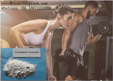 Chiny Steroidy anaboliczne testosteronu Clostebol Acetate White Powder For Muscle Gaining fabryka